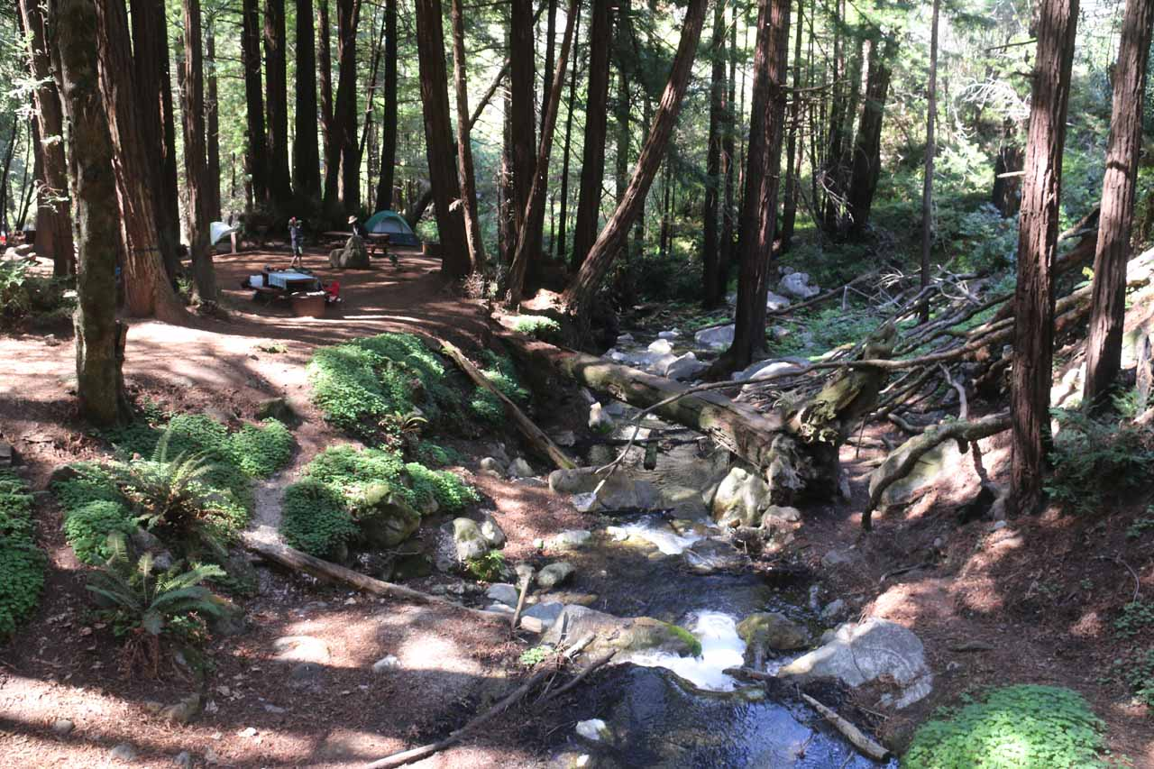 Looking back at one of the campsites adjacent to a flowing stream