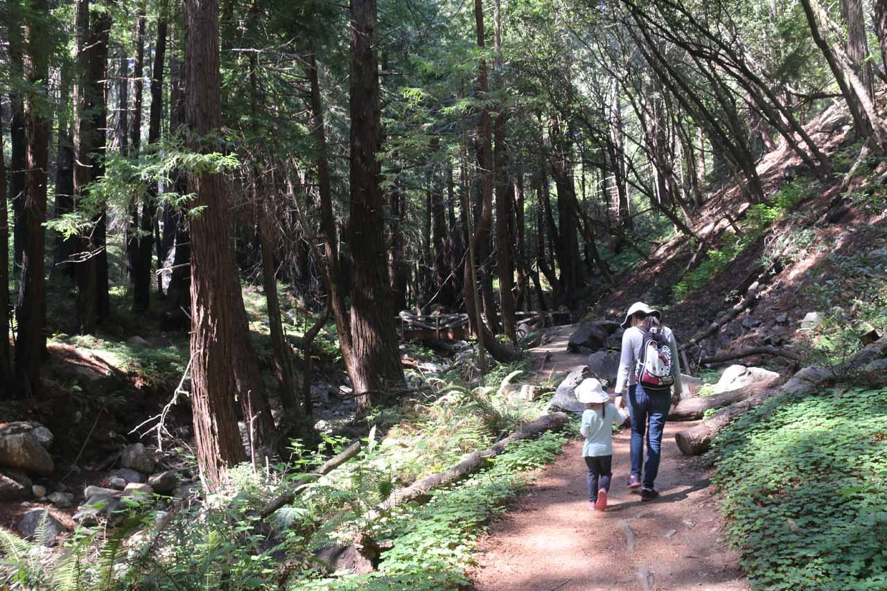 The Limekiln Trail pretty much meandered alongside Limekiln Creek