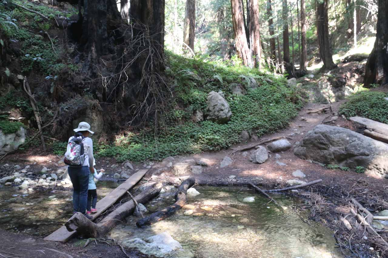 Once we got off the Kiln Trail and onto the Falls Trail, we then had to negotiate unbridged creek crossings like this one