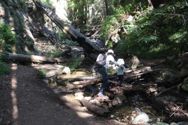 Limekiln_047_04022015 - Julie helping Tahia negotiate deadfall and boulder obstacles at the creek crossings near the base of Limekiln Falls