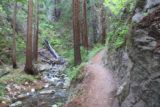 Limekiln_100_04022015 - This narrow part of the peaceful Kiln Trail was just before the lime kilns as seen in April 2015