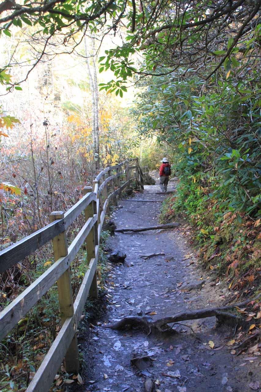 Descending to the Upper Falls Overlook