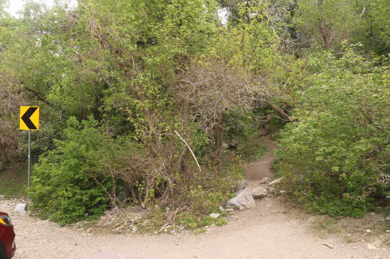 This was the path that I took to get up to Lisa Falls