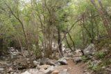 Lisa_Falls_007_05262017 - Scrambling upstream alongside the creek responsible for Lisa Falls en route to the waterfall's base