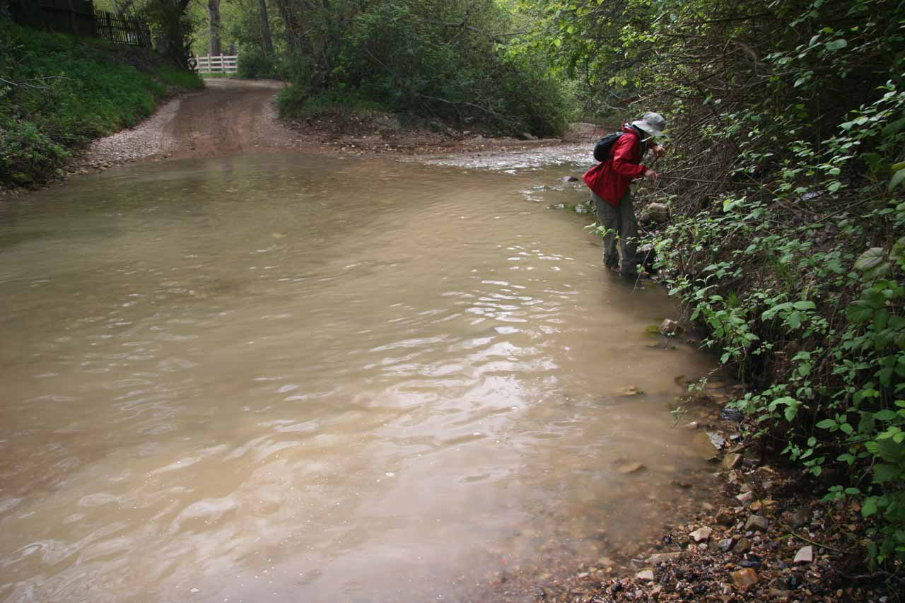 At first, we thought we could avoid drenching our hiking boots at these creek crossings
