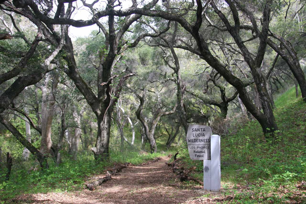 Entering the Santa Lucia Wilderness