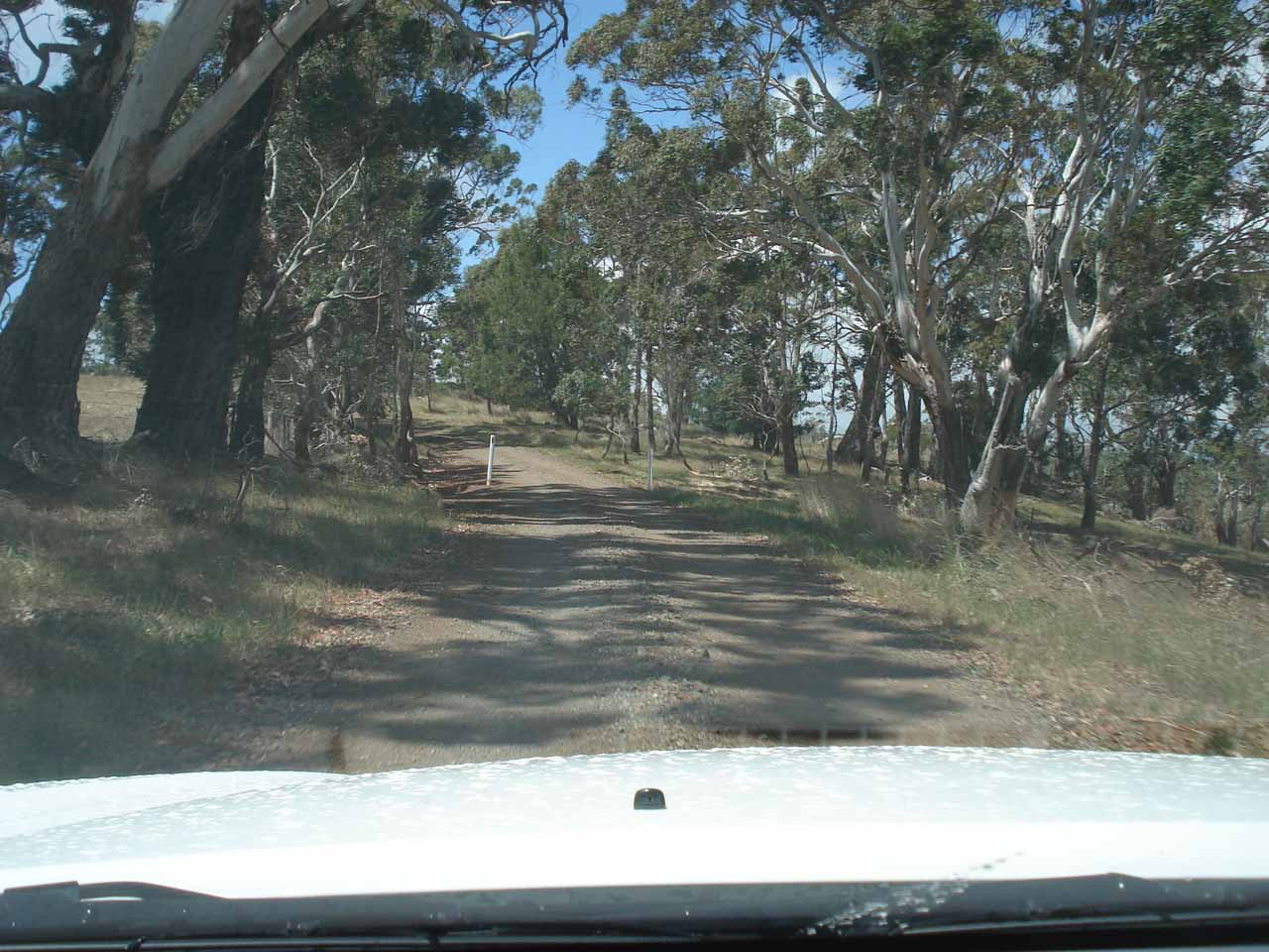 In search of Loddon Falls