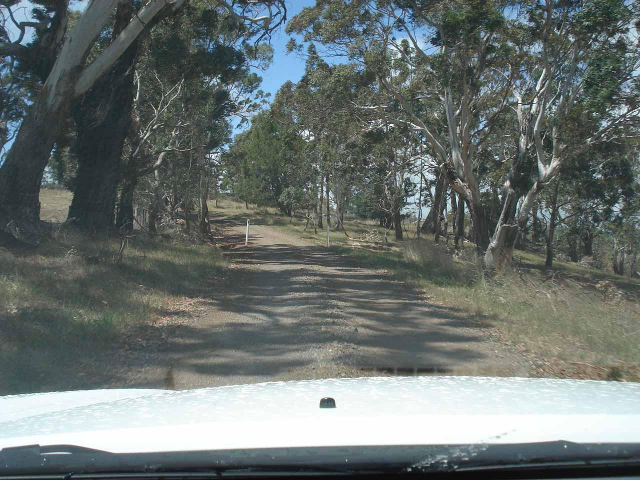 In search of Loddon Falls