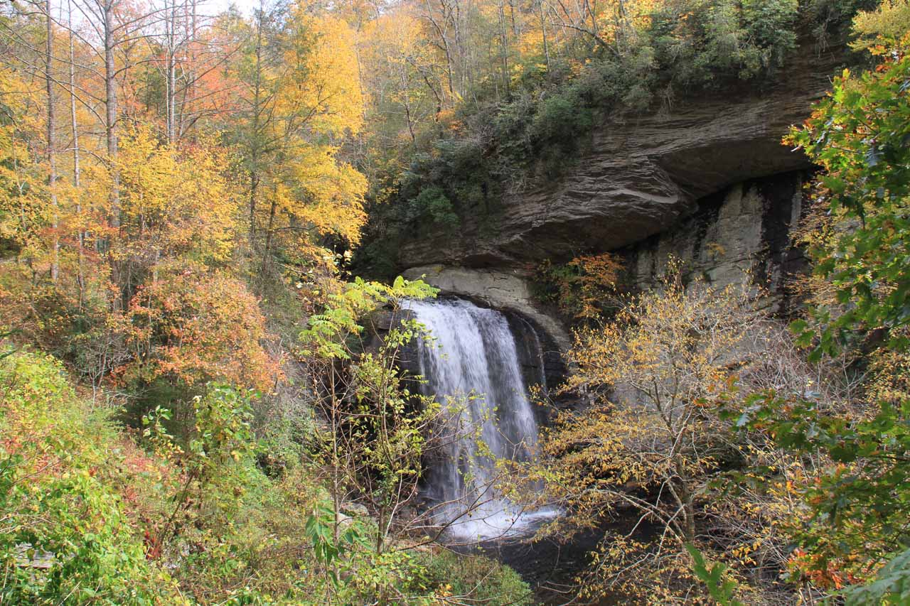 Looking Glass Falls with Autumn colors