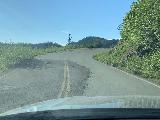 Loowit_Falls_005_iPhone_06252021 - Going by one of the sinking sections of road on the way to Loowit Falls in Mt St Helens