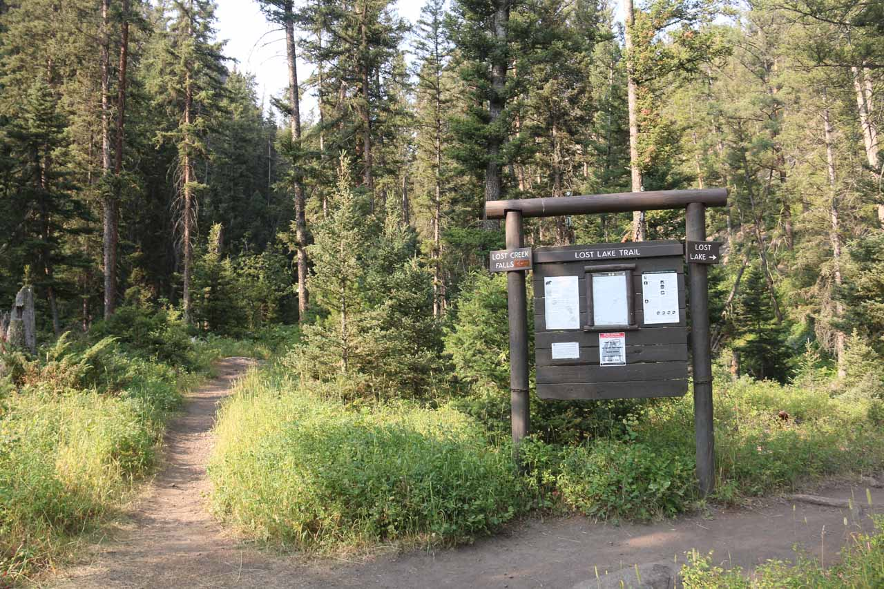 The signposted trail junction where going right led to Lost Lake while going left led to Lost Creek Falls