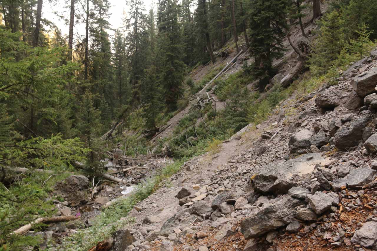 Looking back at the steep and loose terrain, which was why the sanctioned part of the trail did not include this scramble