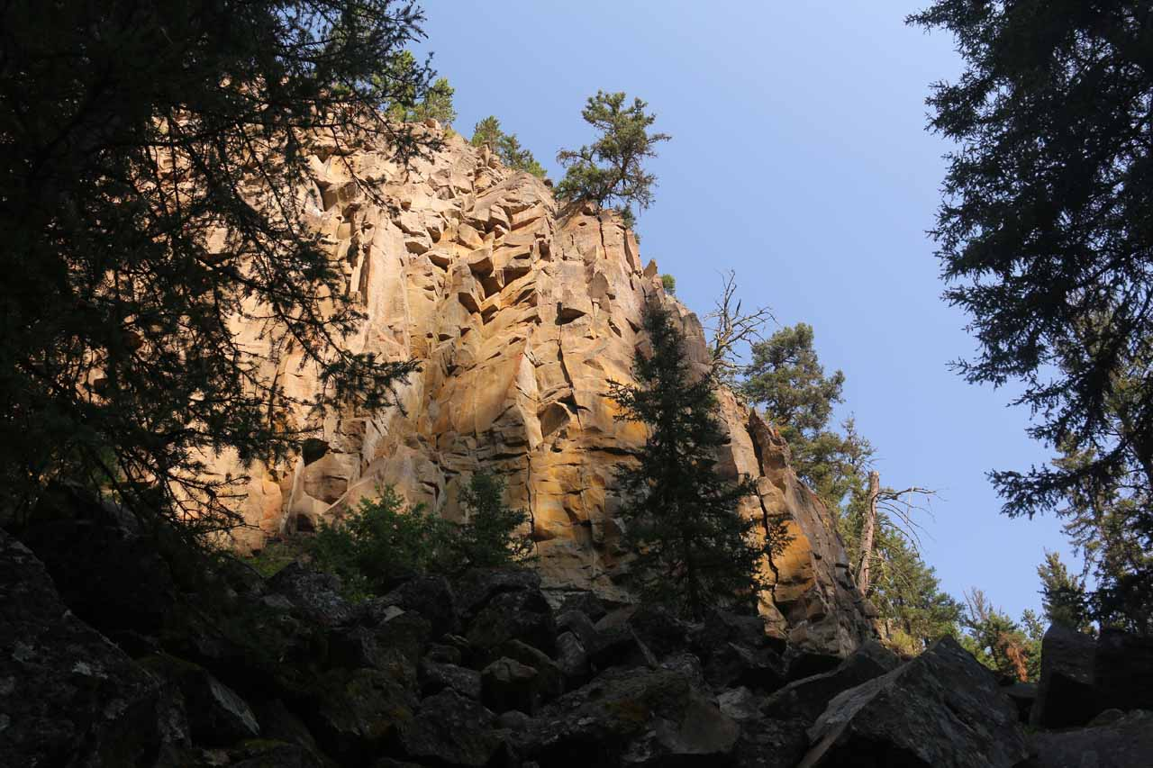 Looking up towards some of the surrounding cliffs around Lost Creek Falls