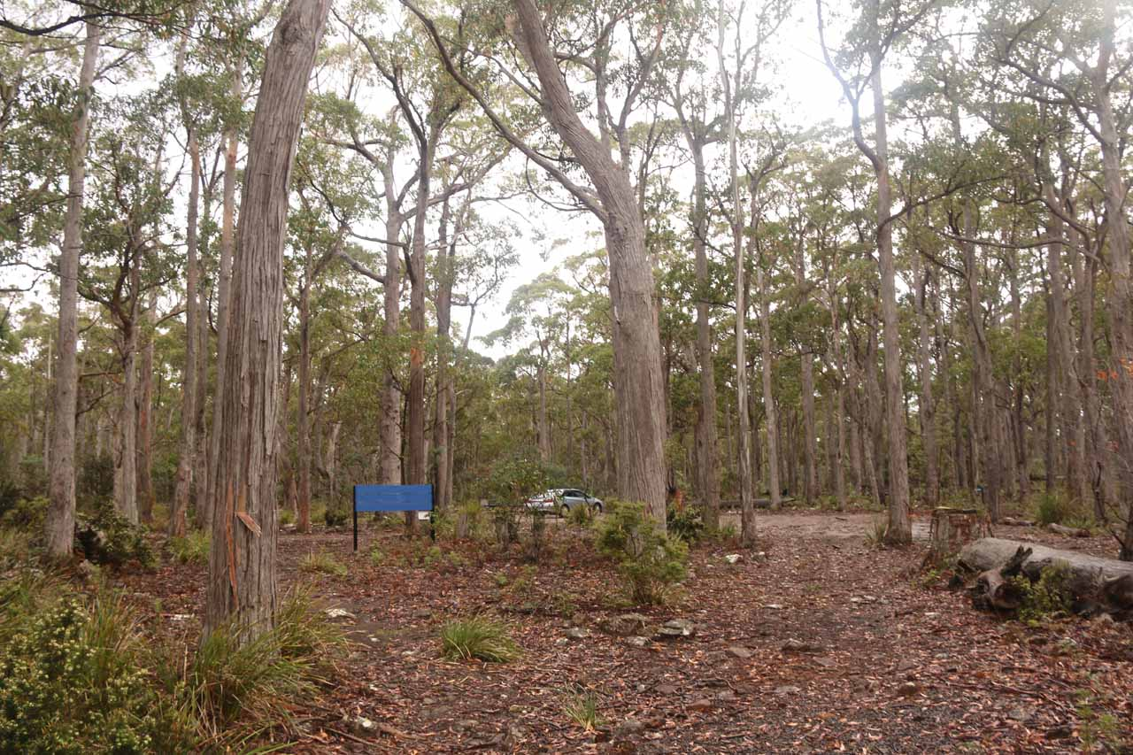 The car park area for Lost Falls from our most recent visit in November 2017