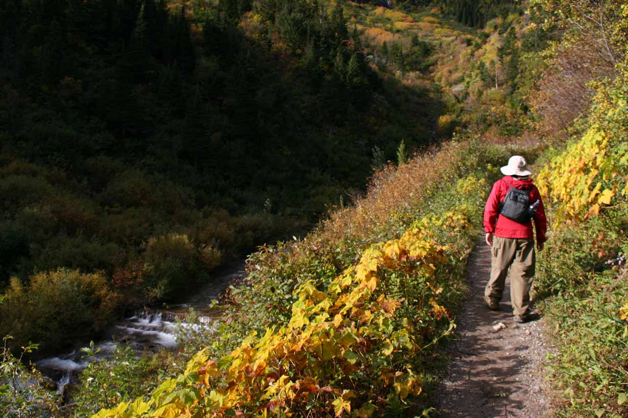 This part of the trail followed Bertha Creek