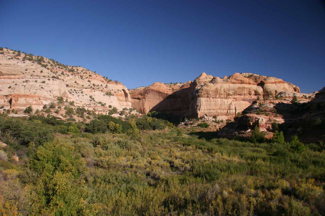The gorgeous Calf Creek Canyon when it's wide open near the start
