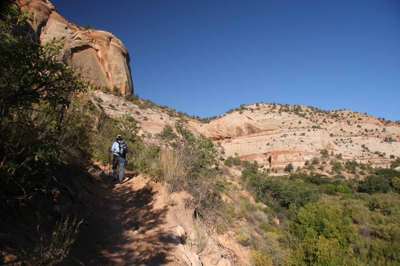 Still out on the trail to Lower Calf Creek Falls