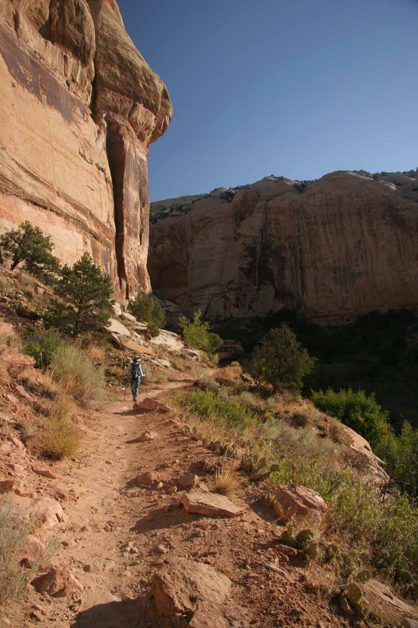 Hiking next to Navajo sandstone cliffs as the canyon was closing in