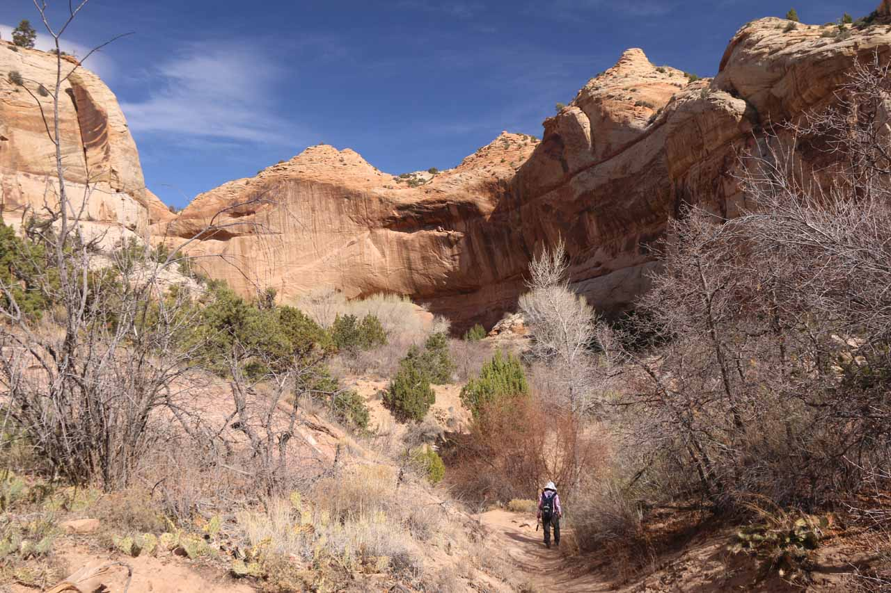 Beyond the pictographs and some cliff-hugging granaries, the canyon walls were really closing in
