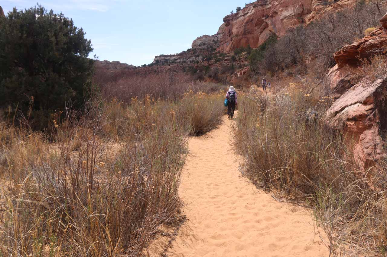 The sandy surface also took its toll on us on the return hike