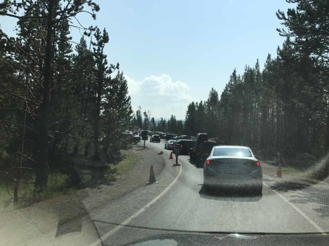 Lower_Falls_Yellowstone_003_iPhone_08102017 - Congestion on the one-way road leading to the first parking lot at the Brink of the Lower Falls
