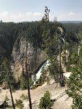 Lower_Falls_Yellowstone_005_iPhone_08102017