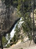 Lower_Falls_Yellowstone_006_iPhone_08102017 - Looking down towards the Lower Falls from somewhere around the trail closure that would have led down to its brink during our August 2017 visit