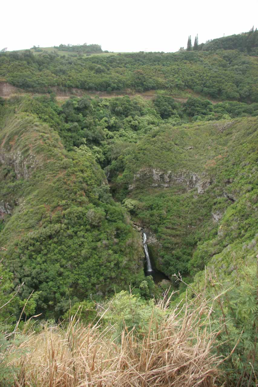 Contextual view of the Lower Makamakaole Falls.  Notice the road cutting way above the falls