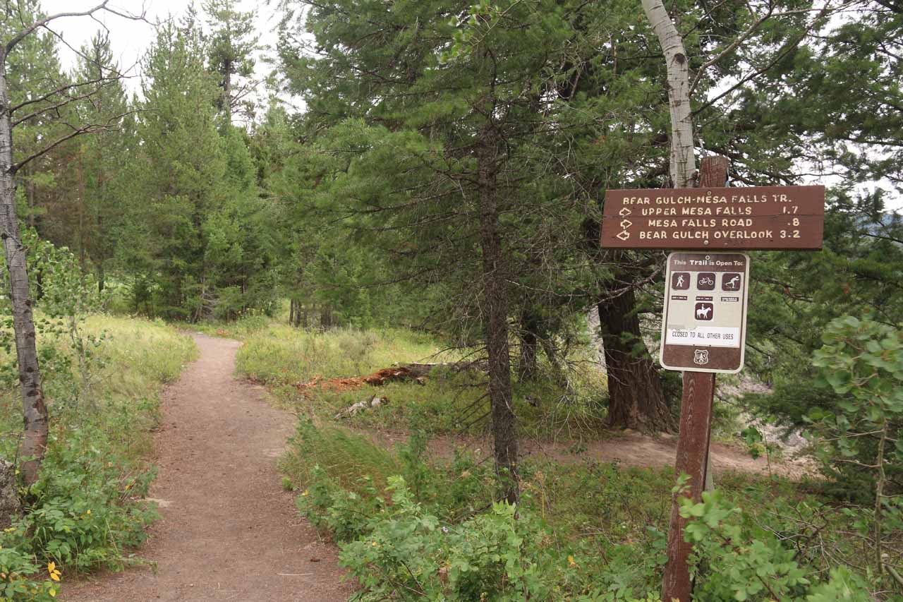 Beyond the overlook, there was a trail that eventually hooked up with the Upper Mesa Falls