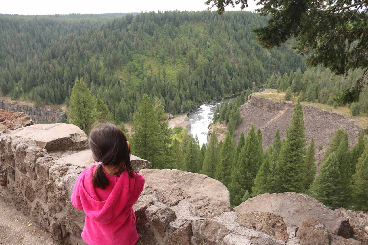 Tahia checking out the distant Lower Mesa Falls from the overlook