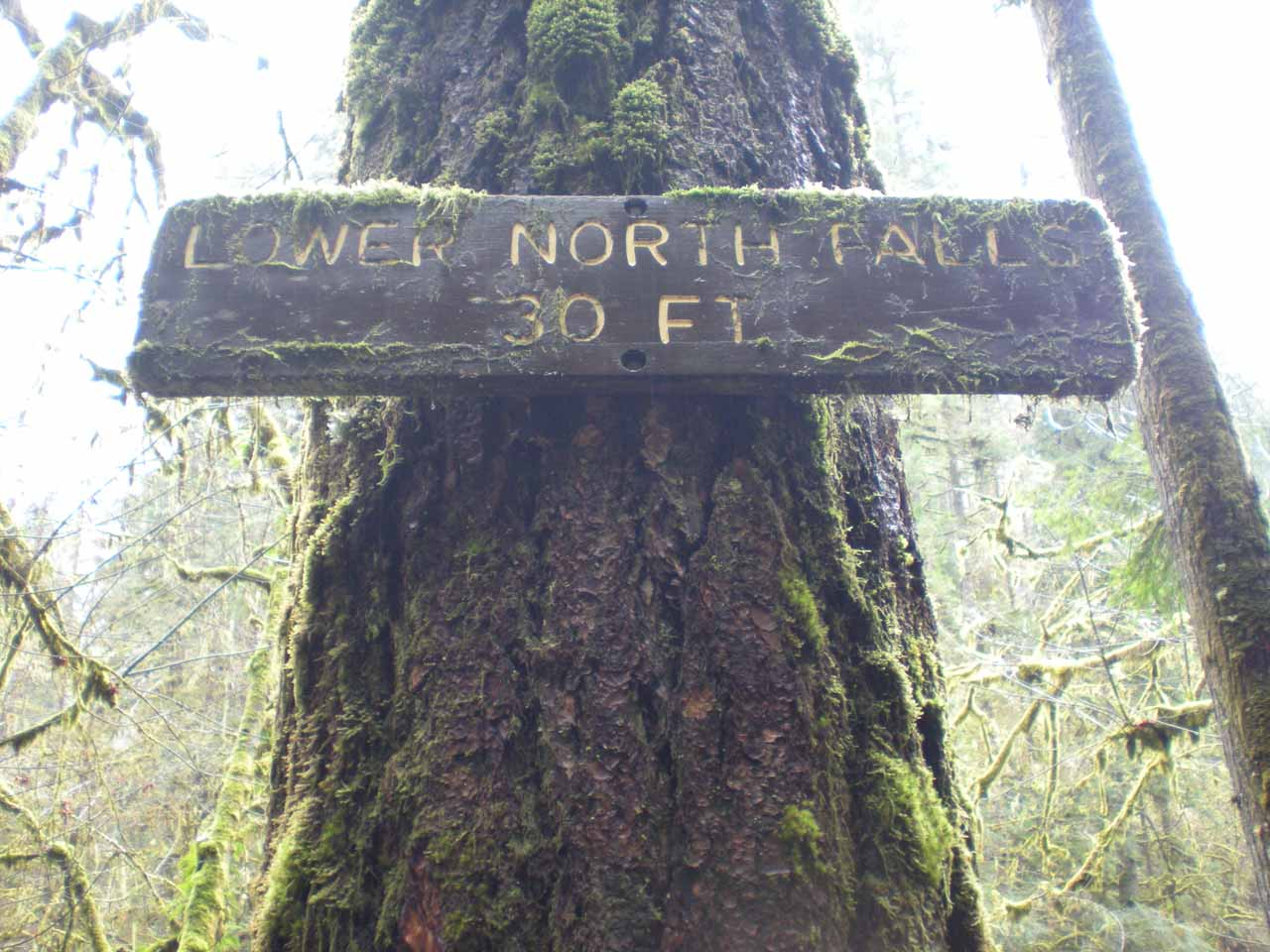 Sign indicating the Lower North Falls' height