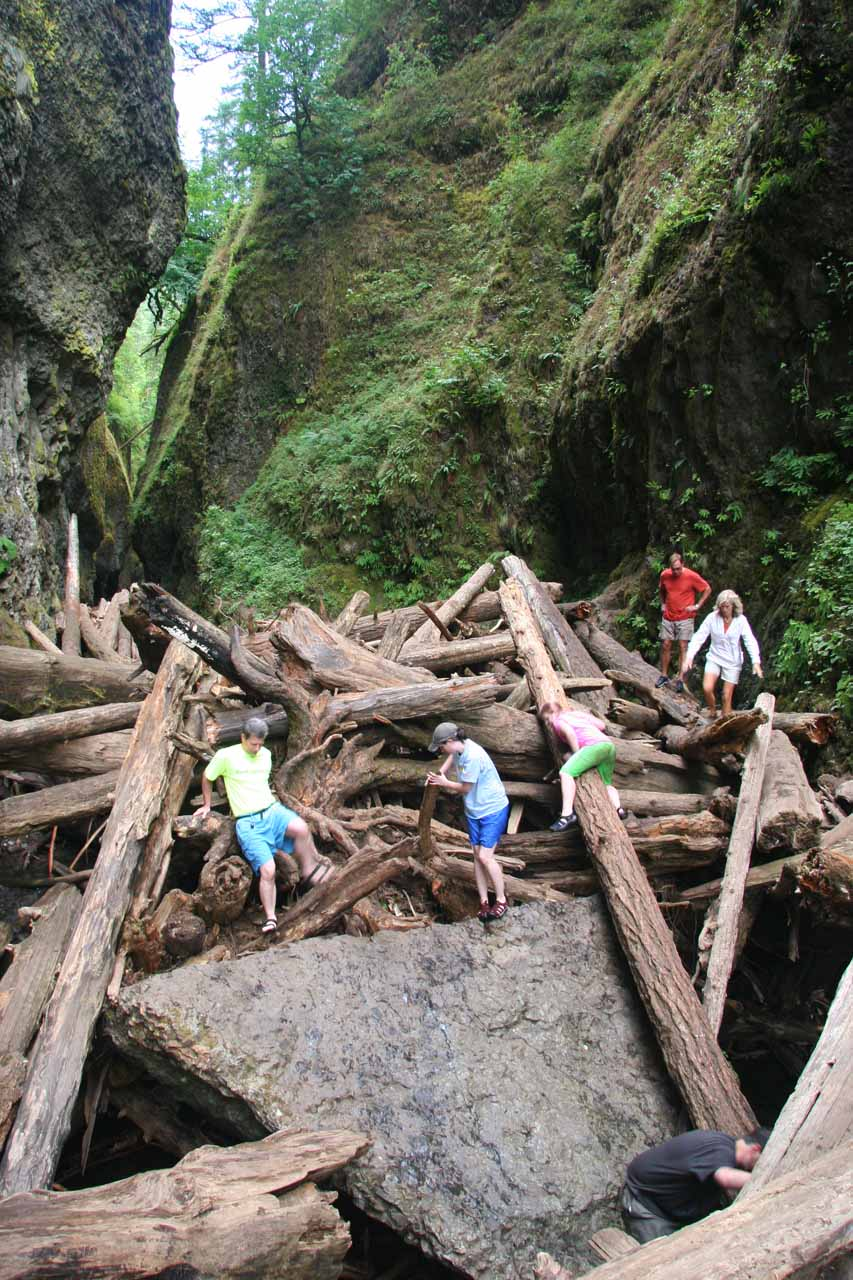 People carefully traversing the log jam