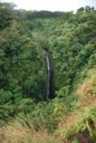 Lower_Puohokamoa_Falls_011_02232007
