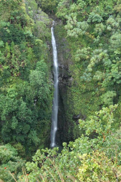 Lower_Puohokamoa_Falls_024_02232007