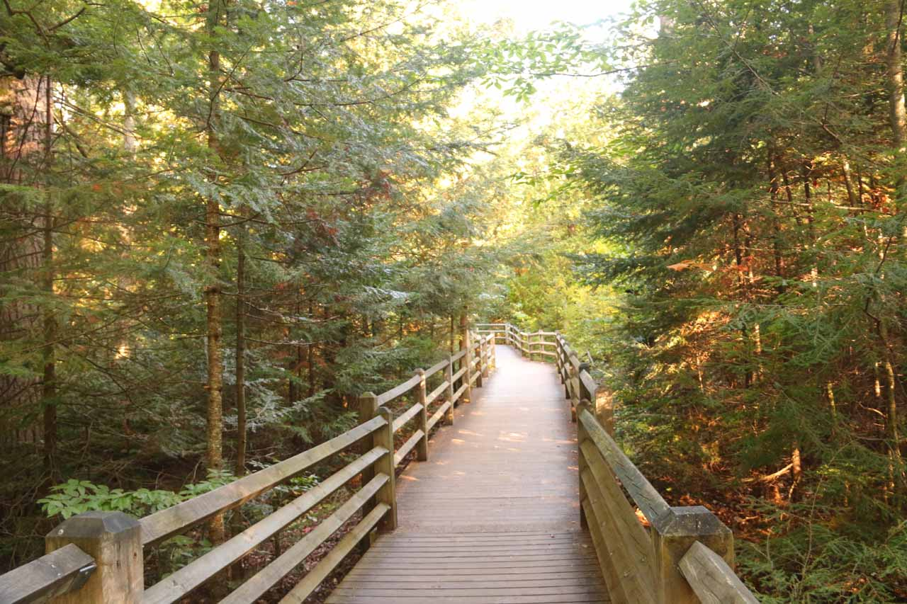 The boardwalk leading closer to the Lower Tahquamenon Falls