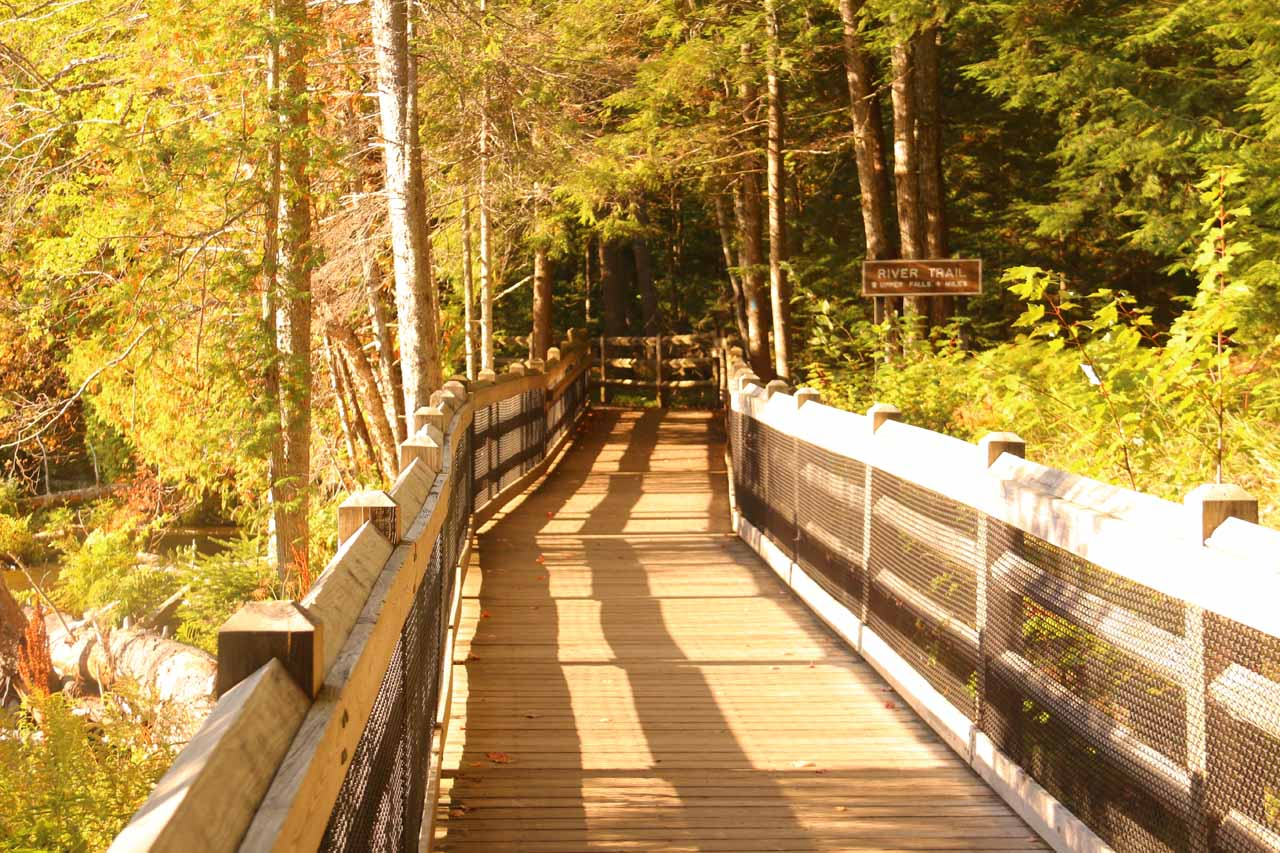 This was the boardwalk continuing the River Trail towards the brink of the uppermost drop of the Lower Tahquamenon Falls