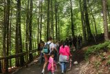 Ludwigs_Castles_359_06252018 - Julie and Tahia hiking up to the Marienbrucke after concluding our tour of the Neuschwanstein Castle