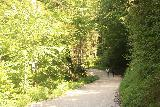 Ludwigs_Castles_505_06252018 - We weren't totally alone on this walk, but as you can see, it was considerably quieter along this route than the one we had taken earlier to get up to the Neuschwanstein Castle