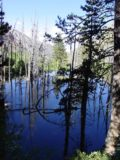 Lundy_Canyon_004_07052002 - Deep blue reflections in a pond seen by the Lundy Canyon Trail