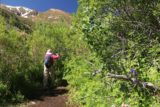Lundy_Canyon_109_07112016 - Mom traversing through a well-vegetated area of Lundy Canyon