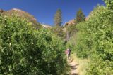 Lundy_Canyon_113_07112016 - Mom and Dad continuing through this lush section of the Lundy Canyon Trail