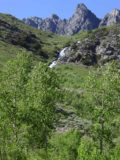 Lundy_Falls_008_07052002 - A minor cascade tumbling down the mountainside in Lundy Canyon as seen in July 2002