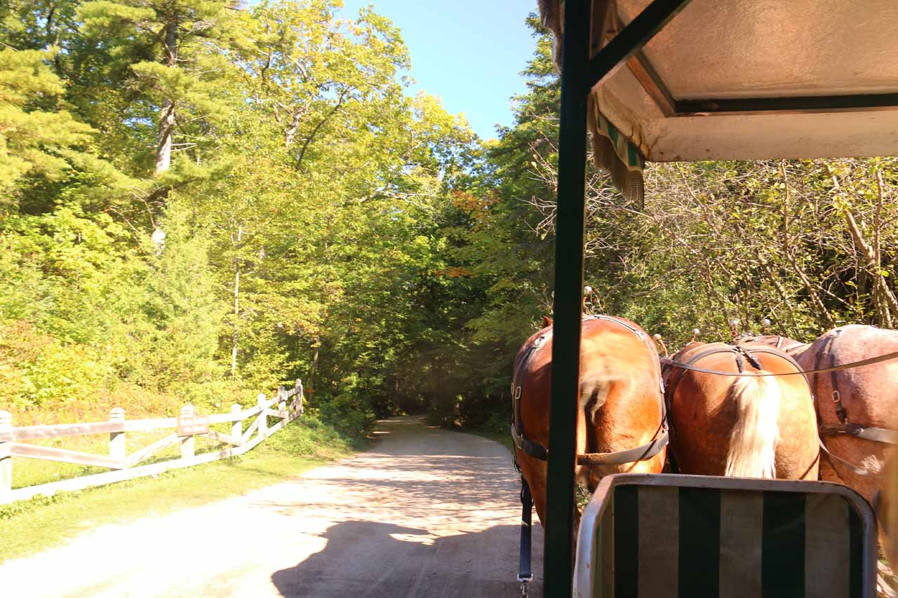 On the next horse-drawn part of our tour of Mackinac Island