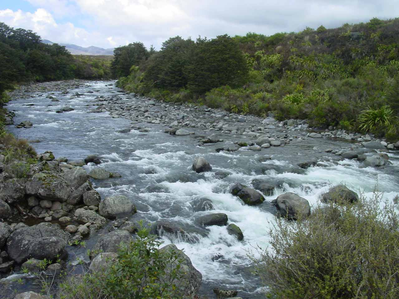 Looking further upstream from what I thought were the Mahuia Rapids