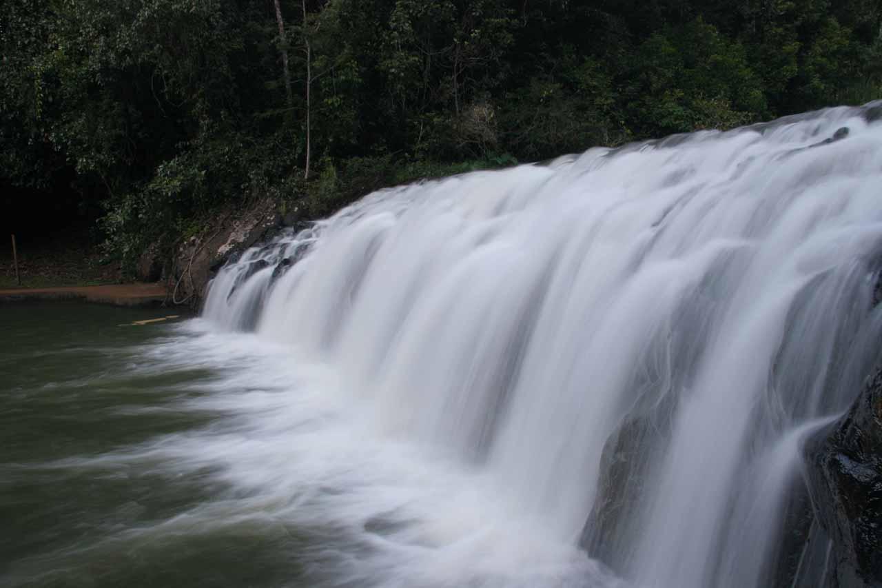Profile view looking along the wide Malanda Falls