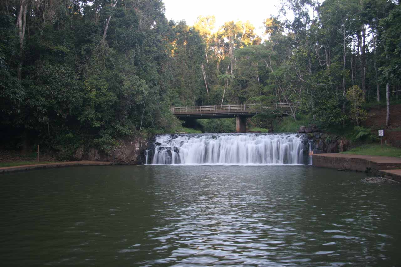 Frontal view of Malanda Falls from across the large swimming pool