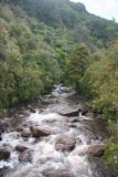 Mangatini_Falls_013_12292009 - Looking at a rushing Ngakawau River as we walked along the Charming Creek Walkway