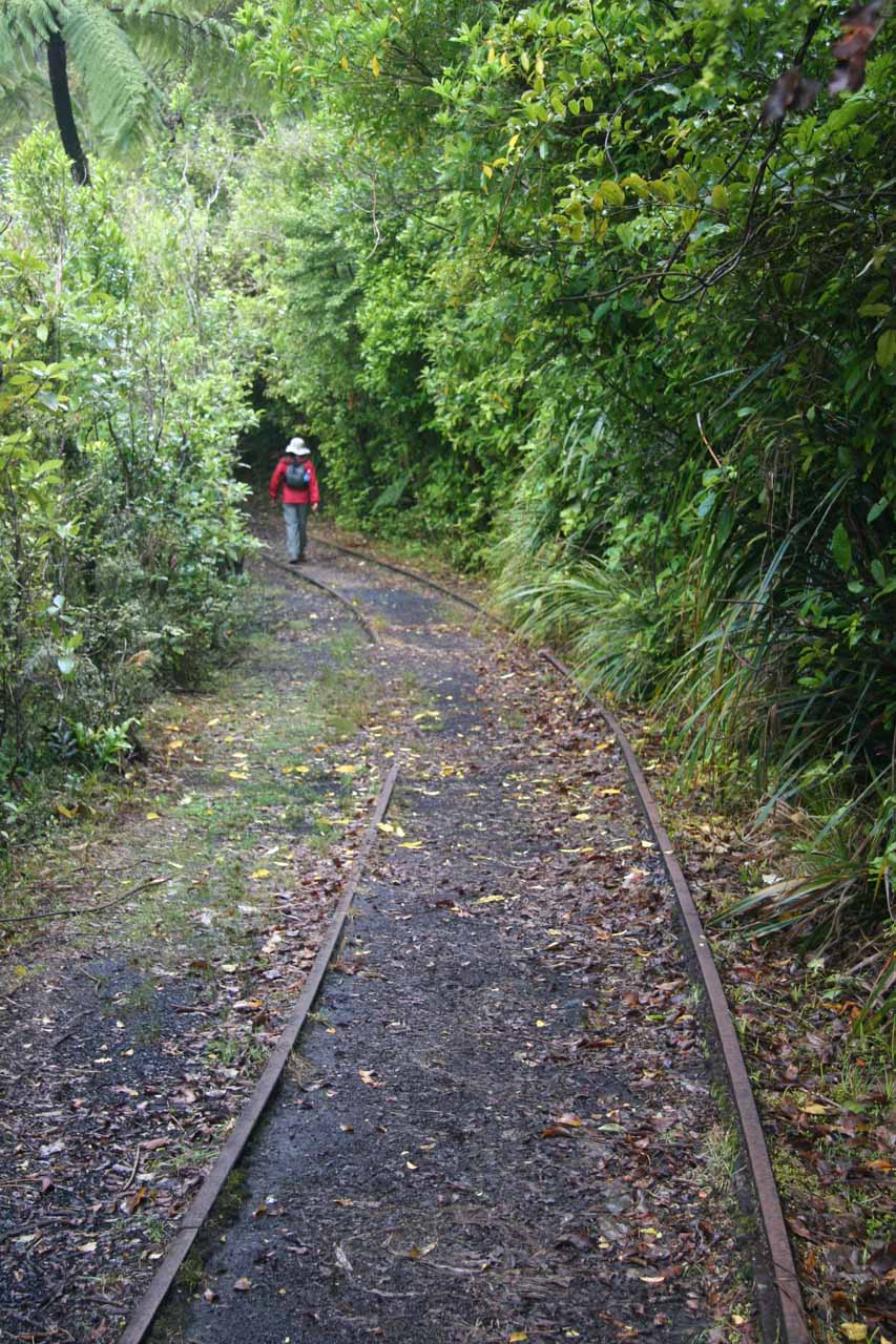Julie still following along the old railroad tracks of the Charming Creek Walkway