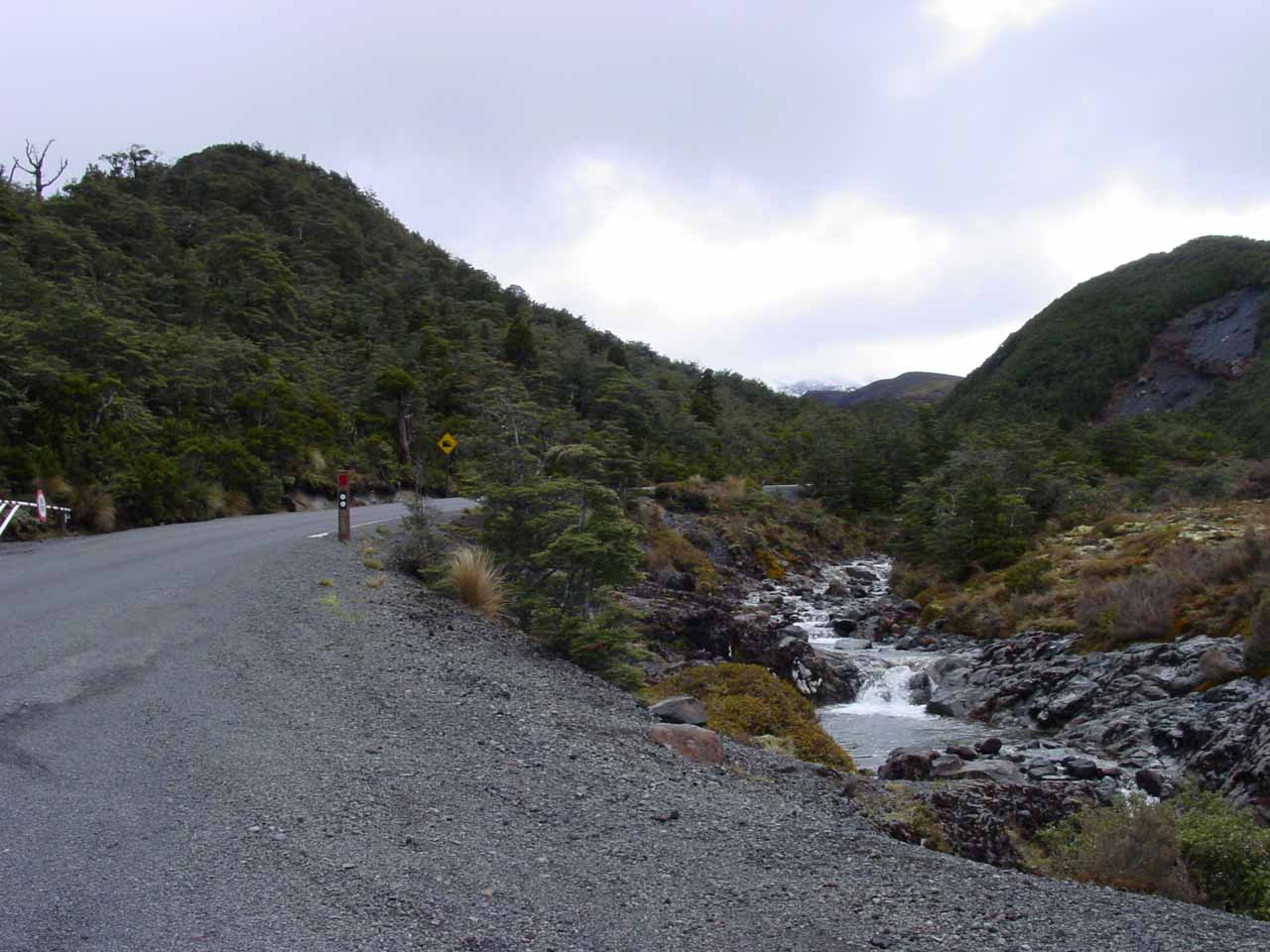 Looking further uphill along the Ohakune Mountain Road from the car park for Mangawhero Falls
