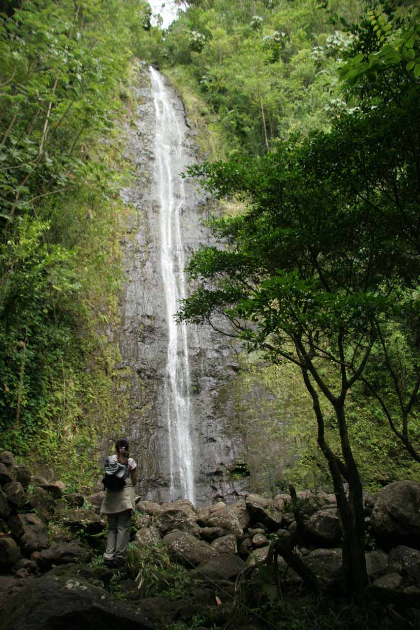 Julie checking out Manoa Falls